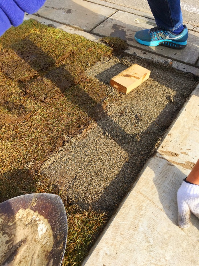 芝の補修中